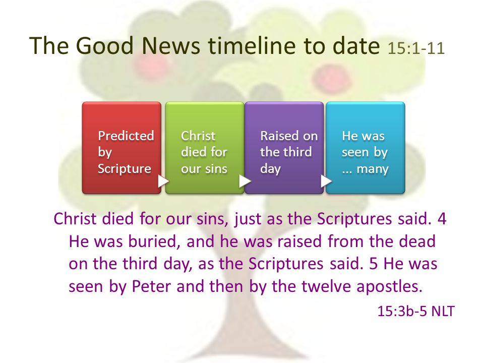 The Good News timeline to date 15:1-11 Christ died for our sins, just as the Scriptures said.