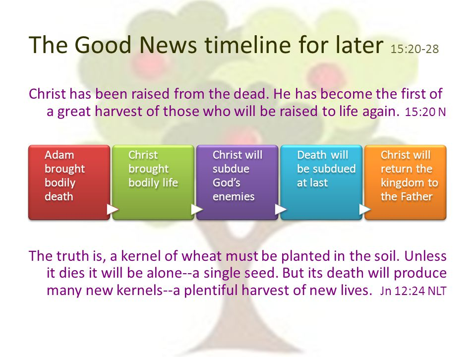 The Good News timeline for later 15:20-28 Christ has been raised from the dead.
