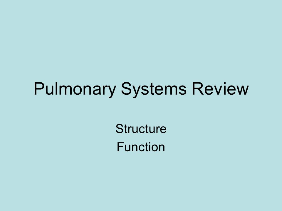 Pulmonary Systems Review Structure Function