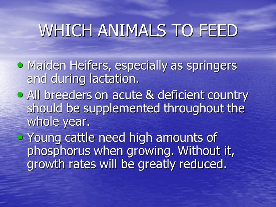 WHICH ANIMALS TO FEED Maiden Heifers, especially as springers and during lactation. Maiden Heifers, especially as springers and during lactation. All