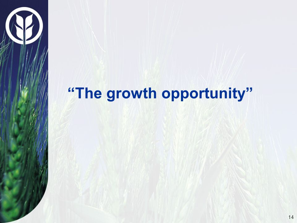 14 The growth opportunity
