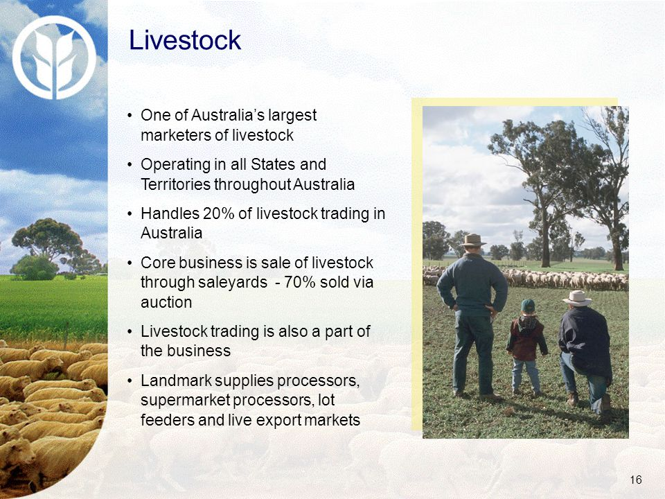 16 One of Australia's largest marketers of livestock Operating in all States and Territories throughout Australia Handles 20% of livestock trading in Australia Core business is sale of livestock through saleyards - 70% sold via auction Livestock trading is also a part of the business Landmark supplies processors, supermarket processors, lot feeders and live export markets Livestock