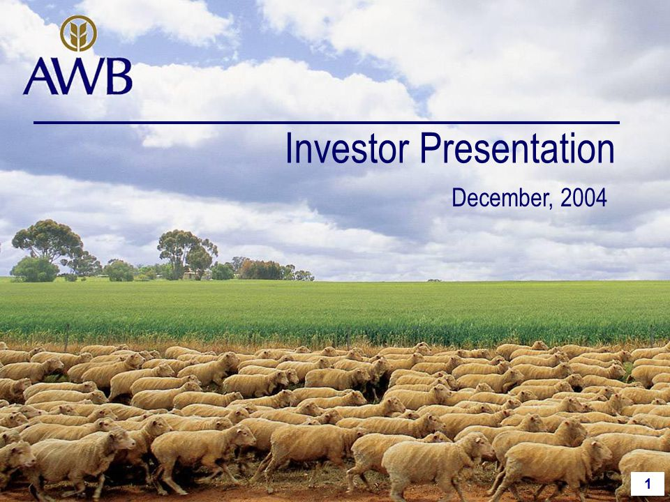 1 Investor Presentation December, 2004