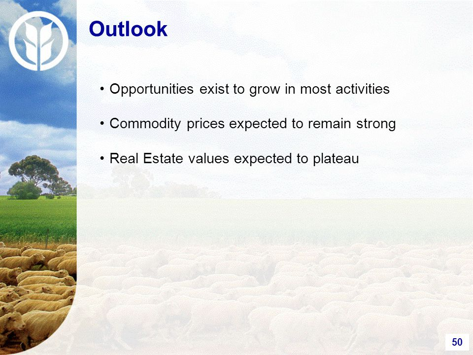 50 Outlook Opportunities exist to grow in most activities Commodity prices expected to remain strong Real Estate values expected to plateau