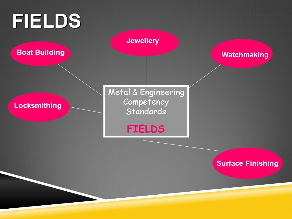 Metal & Engineering Competency Standards FIELDS Jewellery Surface Finishing Boat Building Locksmithing Watchmaking FIELDS