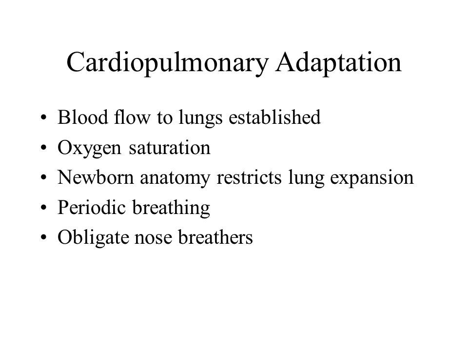 Cardiopulmonary Adaptation Blood flow to lungs established Oxygen saturation Newborn anatomy restricts lung expansion Periodic breathing Obligate nose