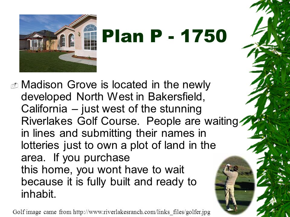 Plan P - 1750  This home comes with an added bonus room, fireplace (in Old Chicago brick), upgraded carpet and vinyl, patio slab, two-tone paint, added wall space and window, 50 gallon water heater, landscaped front and back yard with sprinkler system, and a lot more.