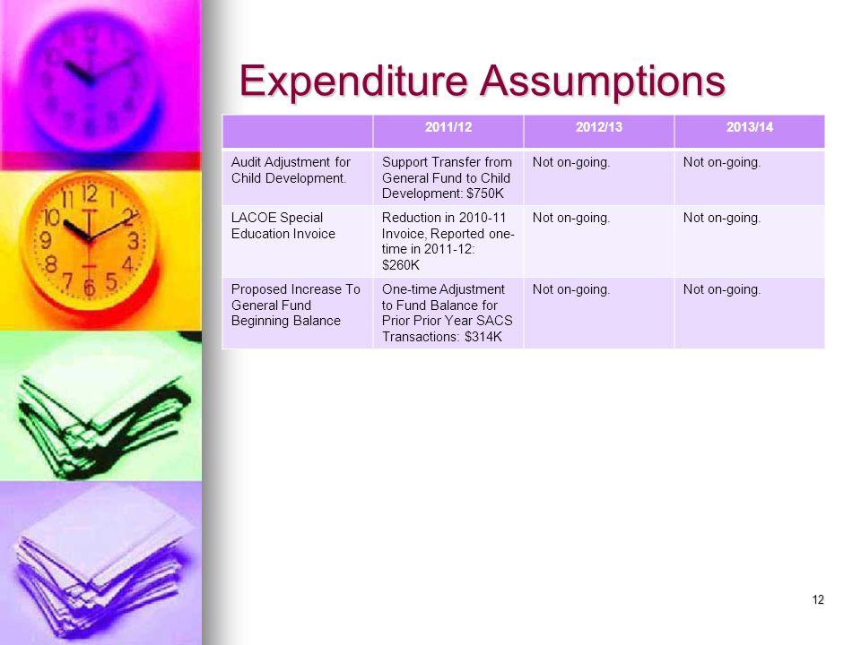 Expenditure Assumptions 2011/122012/132013/14 Audit Adjustment for Child Development.