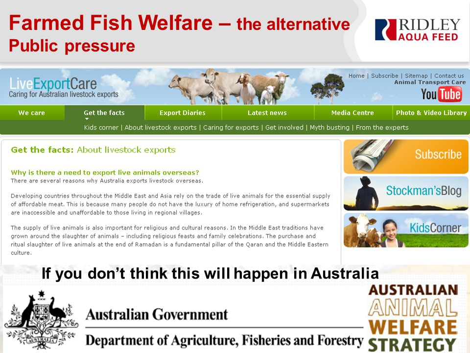 Farmed Fish Welfare – the alternative Public pressure If you don't think this will happen in Australia