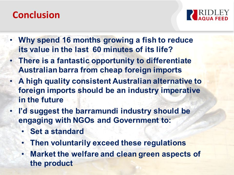 Conclusion Why spend 16 months growing a fish to reduce its value in the last 60 minutes of its life.