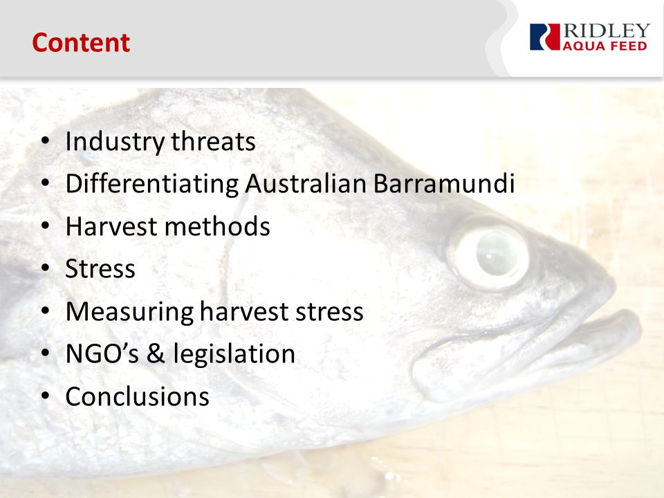 Industry threats Differentiating Australian Barramundi Harvest methods Stress Measuring harvest stress NGO's & legislation Conclusions Content