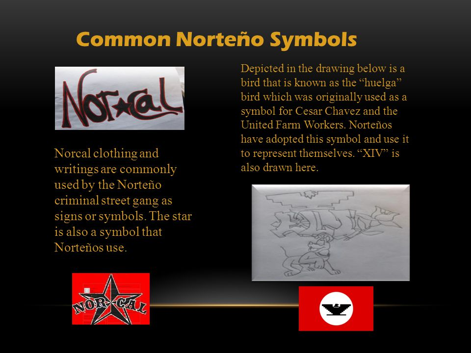 WHAT SHOULD YOU DO IF YOU SEE THIS KIND OF GRAFFITI IN YOUR CHILD/STUDENT'S BELONGINGS.