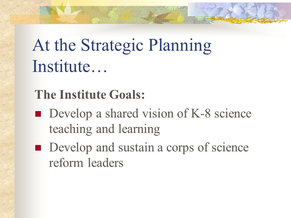 At the Strategic Planning Institute… The Institute Goals: Develop a shared vision of K-8 science teaching and learning Develop and sustain a corps of science reform leaders
