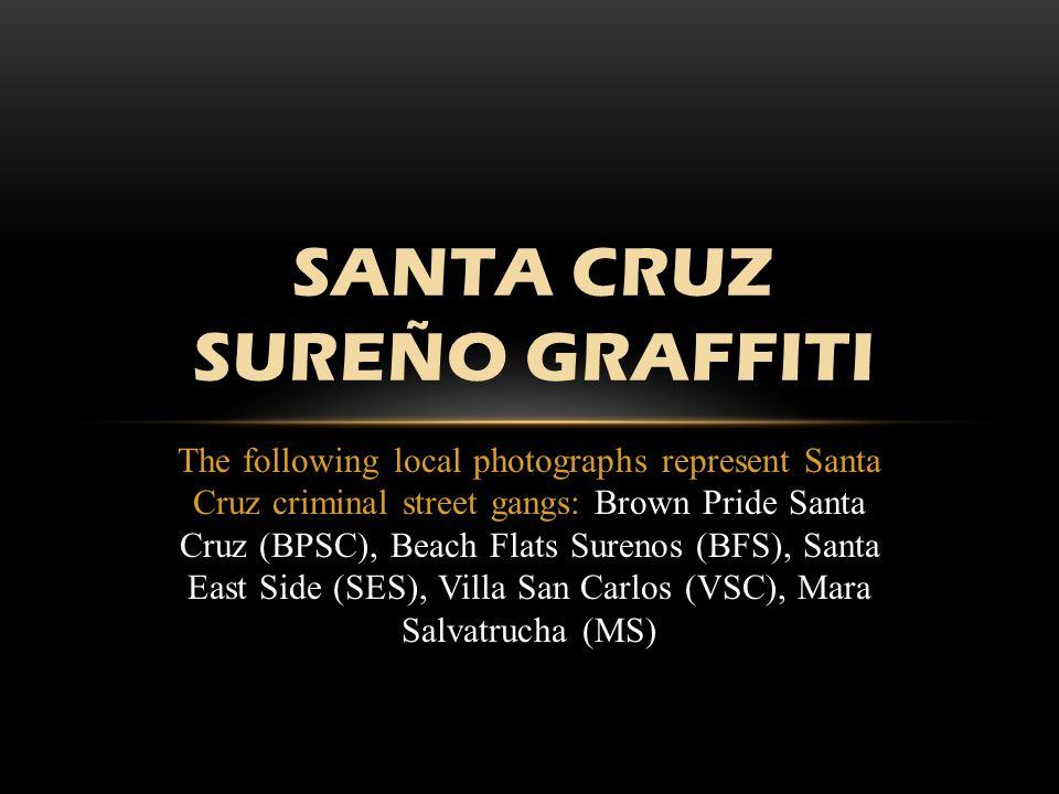 WHY GANG GRAFFITI IS DANGEROUS The purpose of gang graffiti is to glorify the gang.