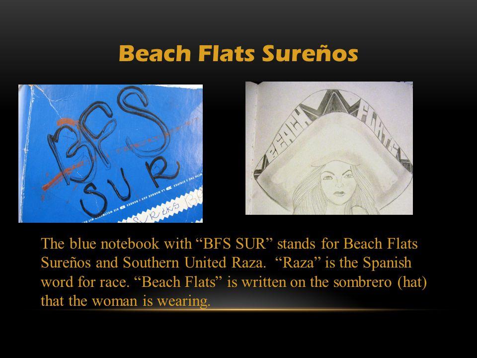 For more information: www.basta.santacruz.k12.ca.us www.basta.santacruz.k12.ca.us Email: basta@santacruz.k12.ca.us