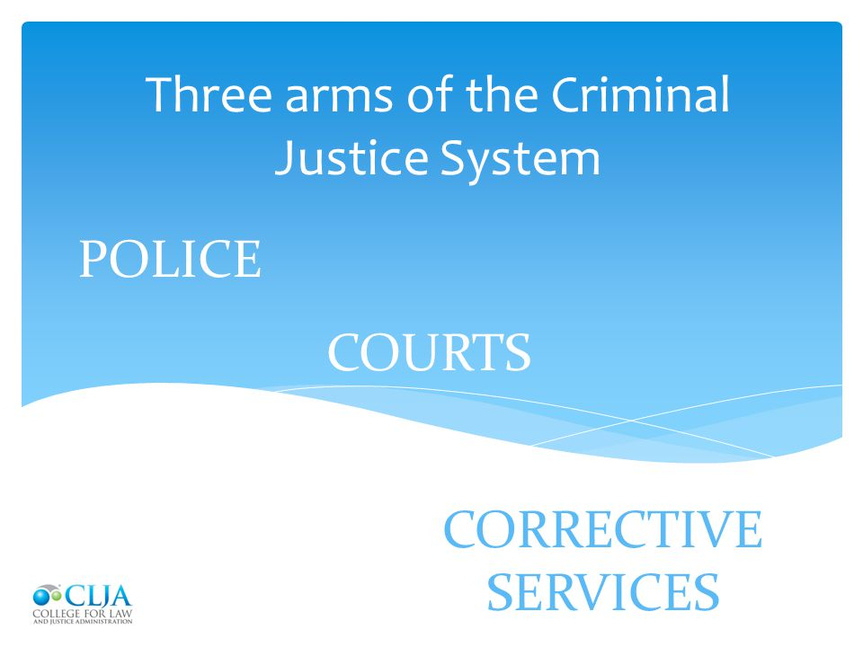 Criminal Justice essay speaking english