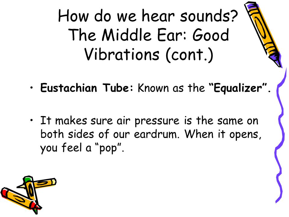 How do we hear sounds.