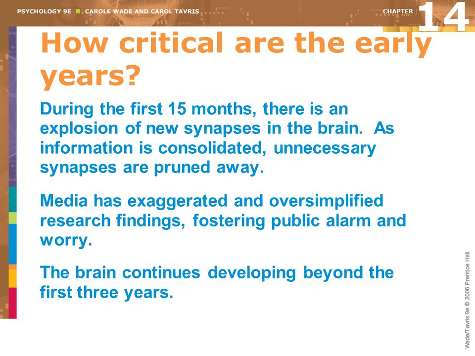 How critical are the early years? 14 During the first 15 months, there is an explosion of new synapses in the brain. As information is consolidated, u