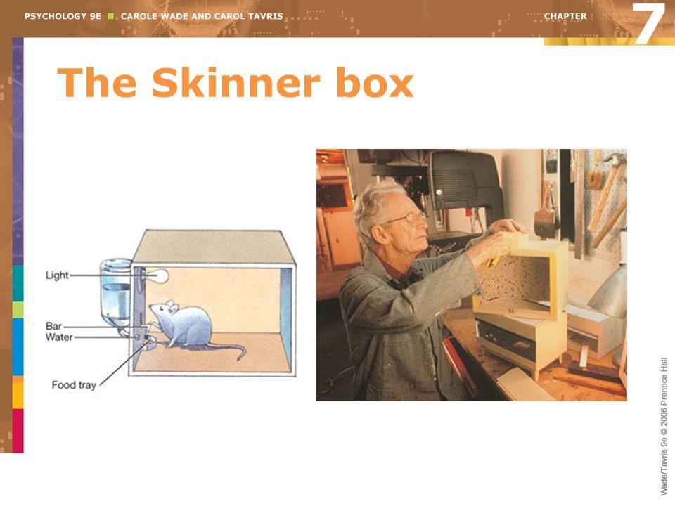 The Skinner box 7