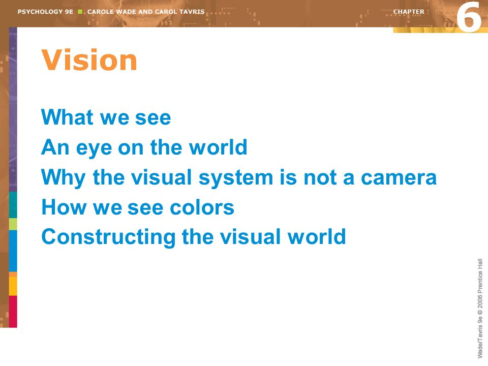 Vision 6 What we see An eye on the world Why the visual system is not a camera How we see colors Constructing the visual world