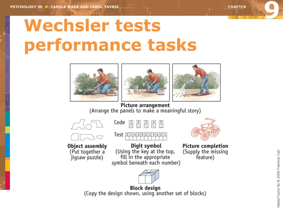 Wechsler tests performance tasks 9
