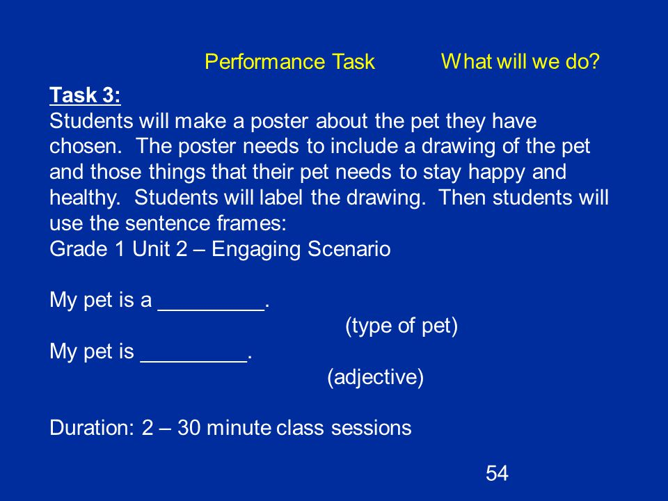 Task 3: Students will make a poster about the pet they have chosen. The poster needs to include a drawing of the pet and those things that their pet n