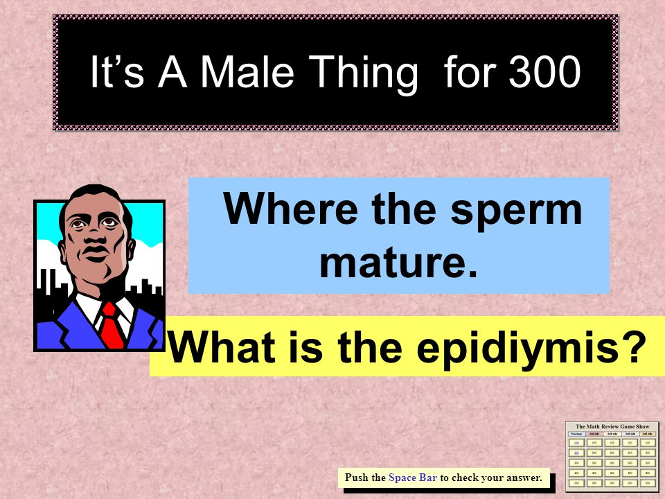 It's A Male Thing for 200 ______ and _______ are produced inside the testes.
