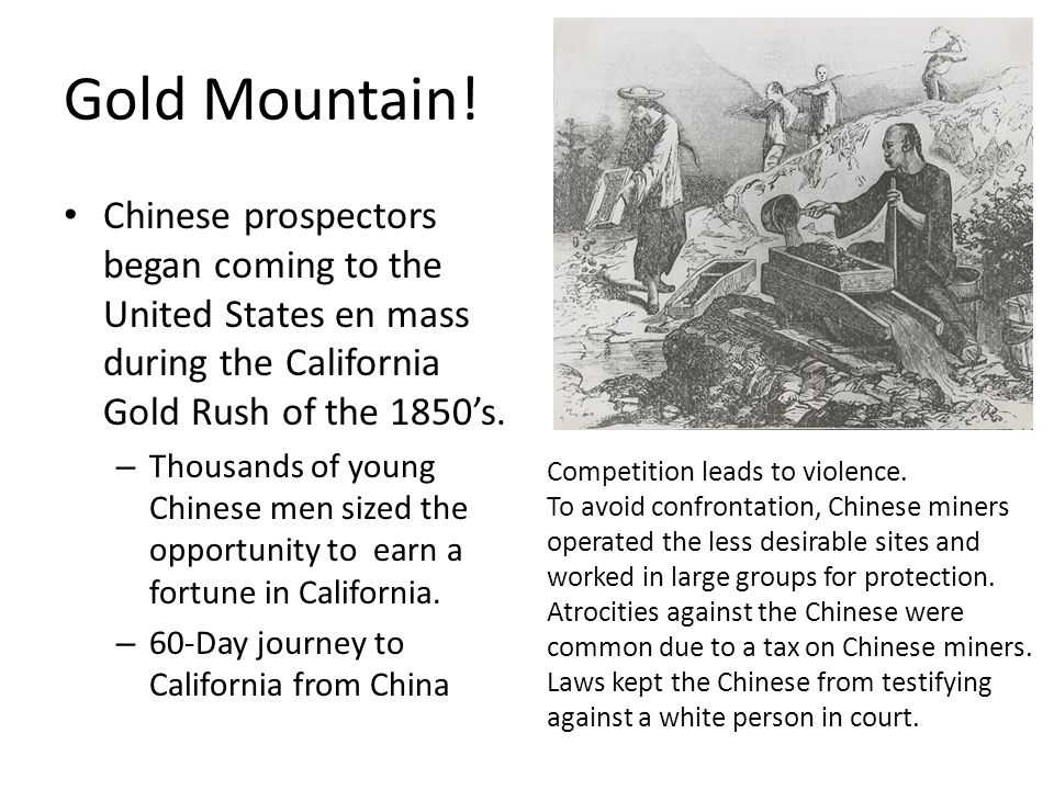 Gold Mountain! Chinese prospectors began coming to the United States en mass during the California Gold Rush of the 1850's. – Thousands of young Chine