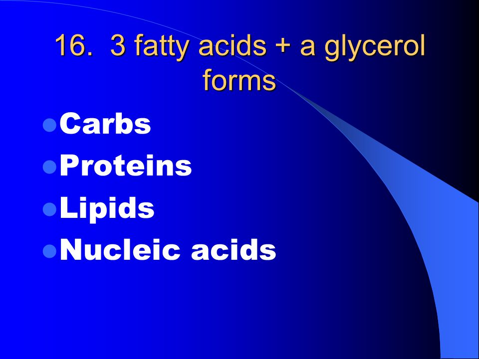 16. 3 fatty acids + a glycerol forms Carbs Proteins Lipids Nucleic acids
