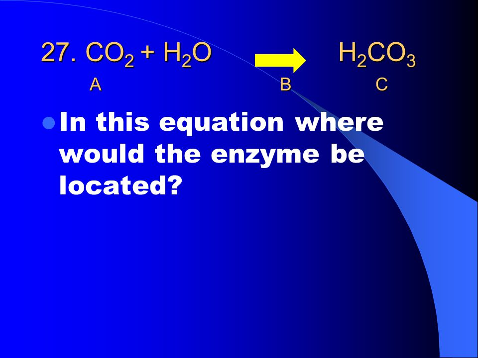27. CO 2 + H 2 O H 2 CO 3 ABC In this equation where would the enzyme be located