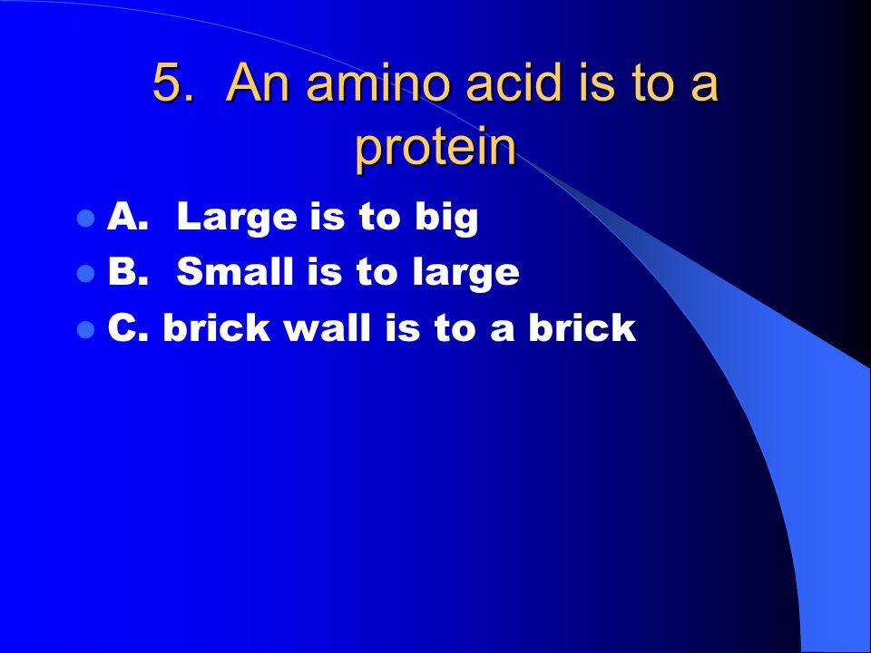 16. 3 fatty acids + a glycerol forms Carbs Proteins Lipids Nucleic acids