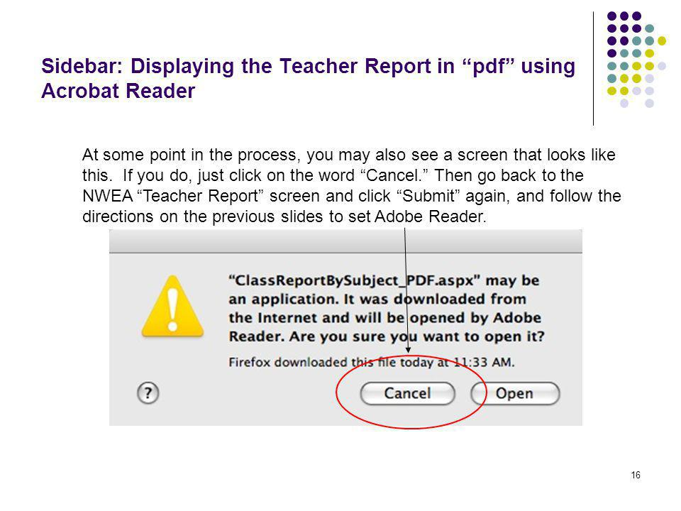 """16 Sidebar: Displaying the Teacher Report in """"pdf"""" using Acrobat Reader At some point in the process, you may also see a screen that looks like this."""