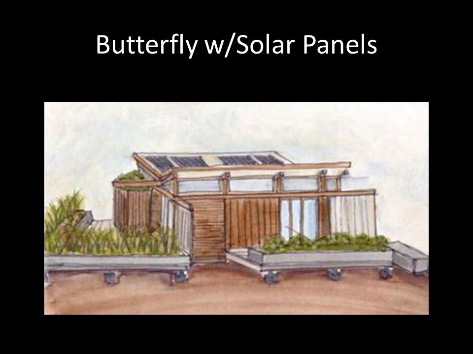 Butterfly w/Solar Panels