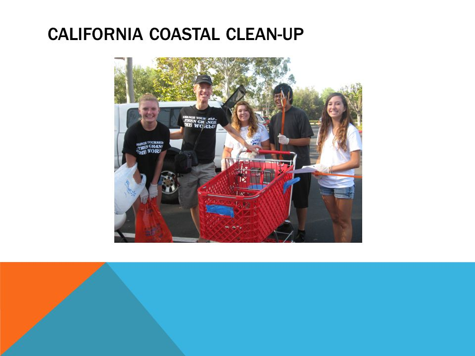 CALIFORNIA COASTAL CLEAN-UP