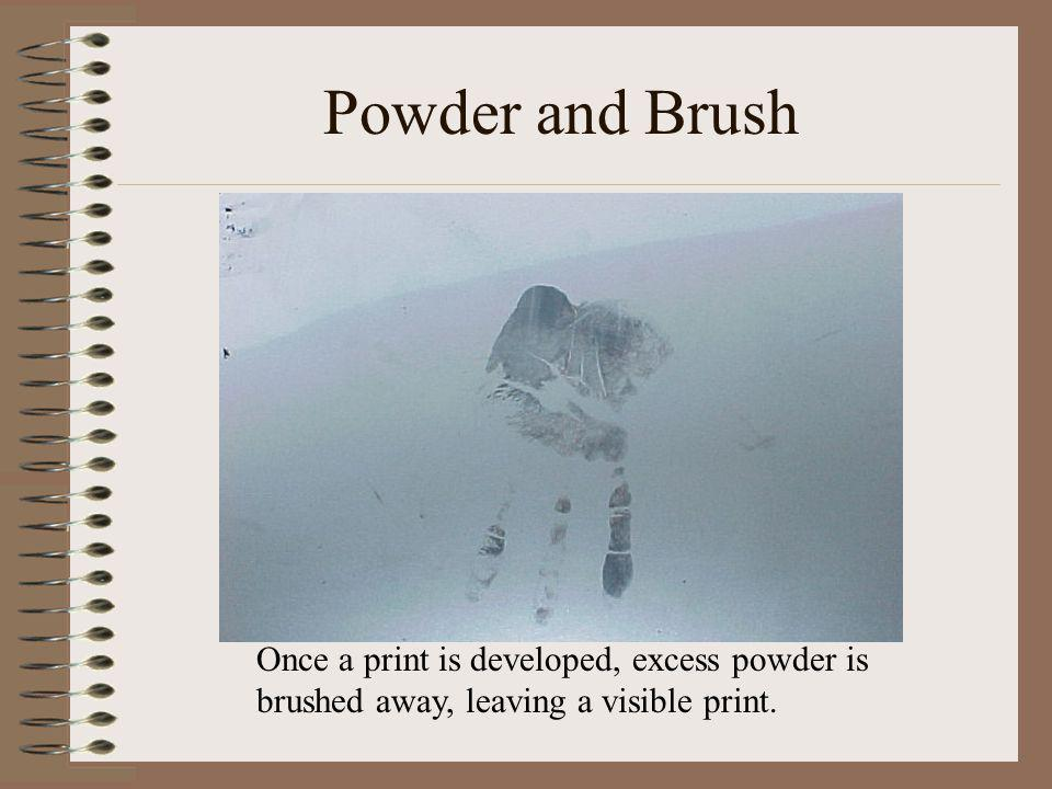 Powder and Brush Once a print is developed, excess powder is brushed away, leaving a visible print.