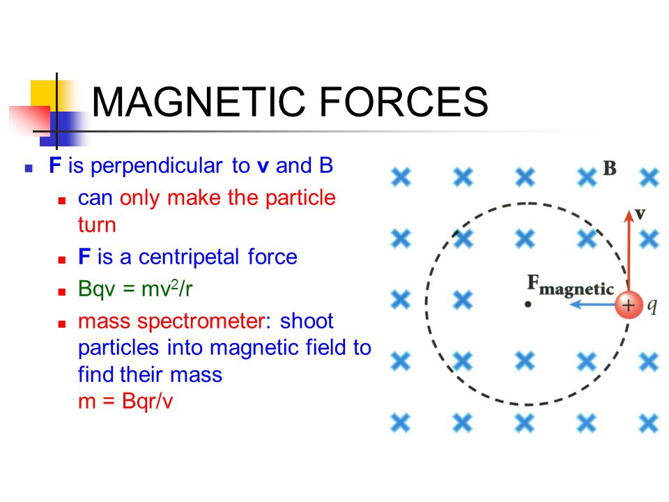 MAGNETIC FORCES F is perpendicular to v and B can only make the particle turn F is a centripetal force Bqv = mv 2 /r mass spectrometer: shoot particle