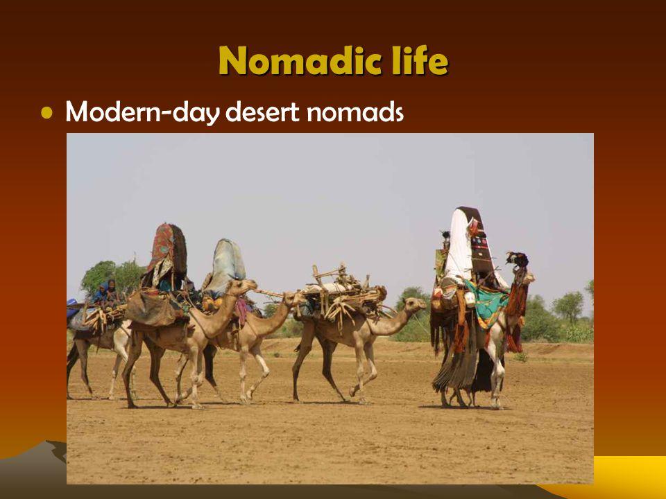 Nomadic life Modern-day desert nomads