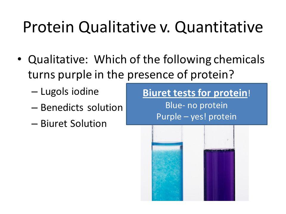 Protein Qualitative v.