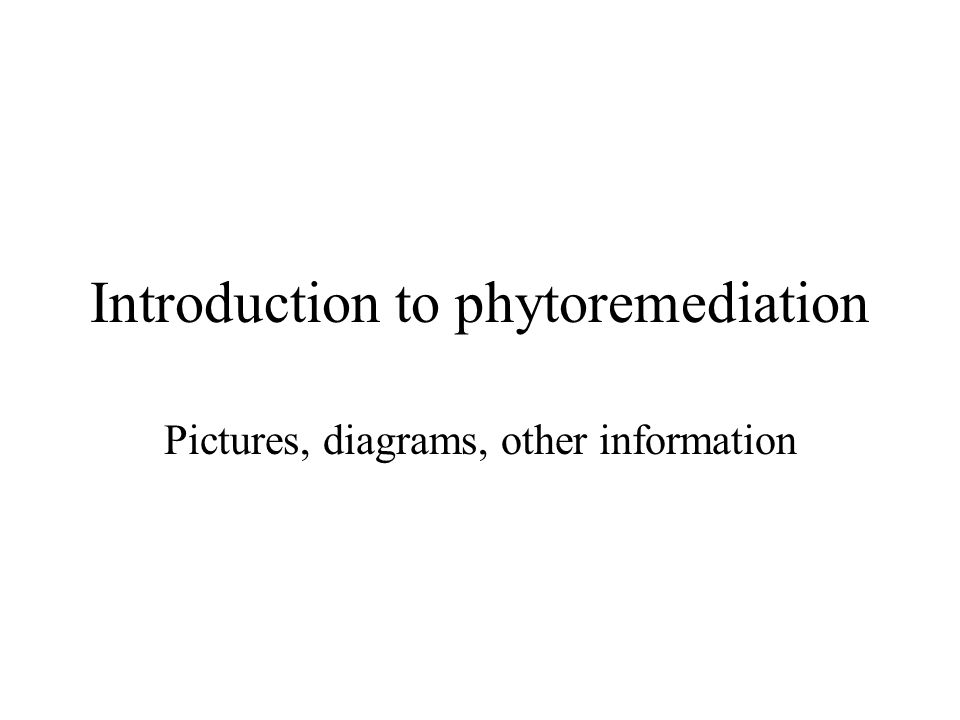 Introduction to phytoremediation Pictures, diagrams, other information