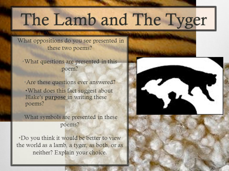 The Lamb and The TygerThe Lamb and The Tyger What oppositions do you see presented in these two poems? What questions are presented in this poem? Are
