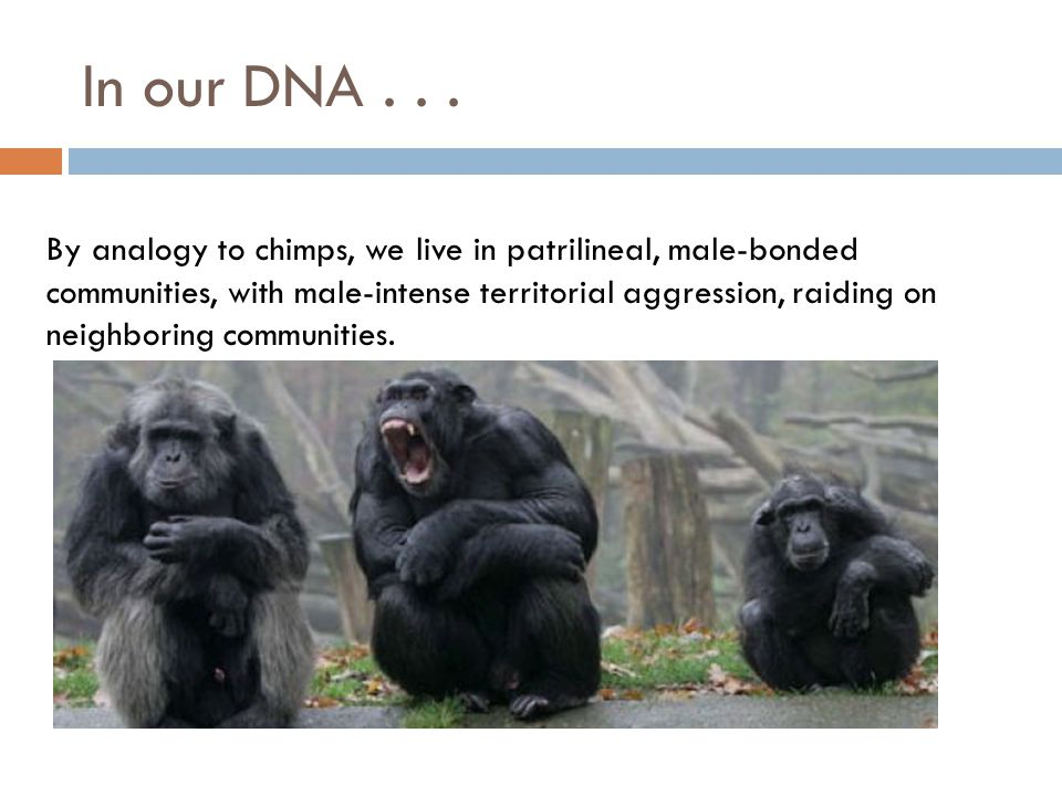 In our DNA...