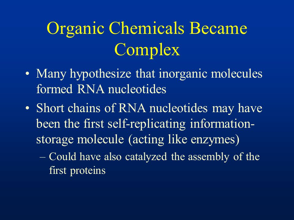 Organic Chemicals Became Complex Many hypothesize that inorganic molecules formed RNA nucleotides Short chains of RNA nucleotides may have been the fi