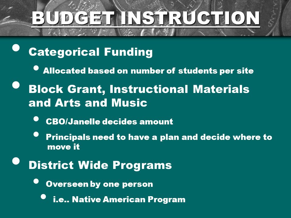 BUDGET INSTRUCTION Categorical Funding Allocated based on number of students per site Block Grant, Instructional Materials and Arts and Music CBO/Janelle decides amount Principals need to have a plan and decide where to move it District Wide Programs Overseen by one person i.e..
