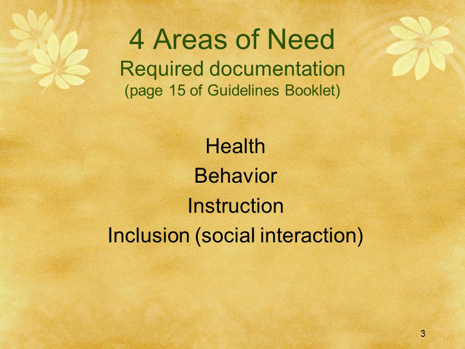 4 Areas of Need Required documentation (page 15 of Guidelines Booklet) Health Behavior Instruction Inclusion (social interaction) 3
