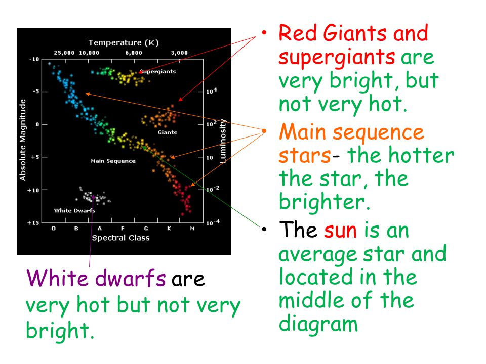 Red Giants and supergiants are very bright, but not very hot. Main sequence stars- the hotter the star, the brighter. The sun is an average star and l
