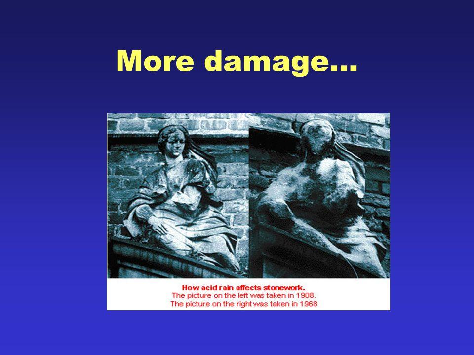 More damage…