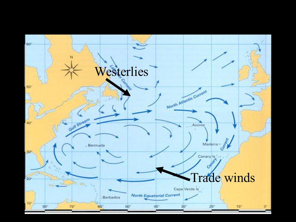 Trade winds Westerlies