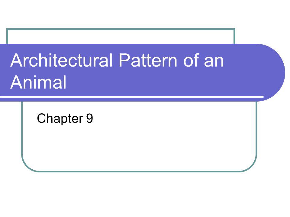 Architectural Pattern of an Animal Chapter 9