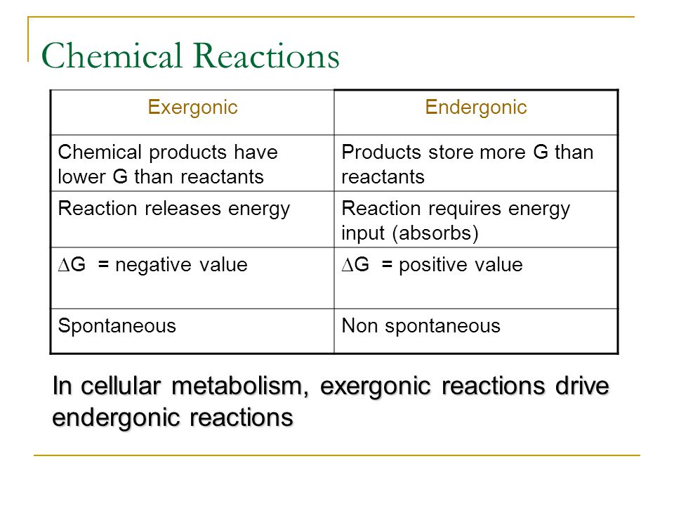Chemical Reactions ExergonicEndergonic Chemical products have lower G than reactants Products store more G than reactants Reaction releases energyReac