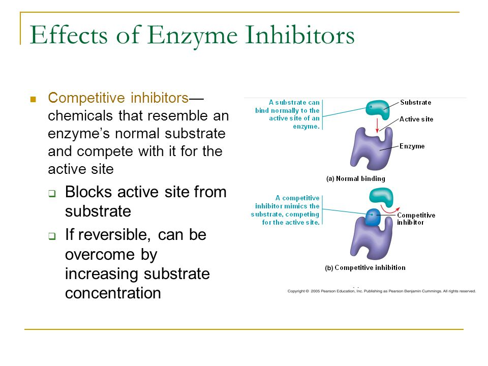 Effects of Enzyme Inhibitors Competitive inhibitors— chemicals that resemble an enzyme's normal substrate and compete with it for the active site  Bl